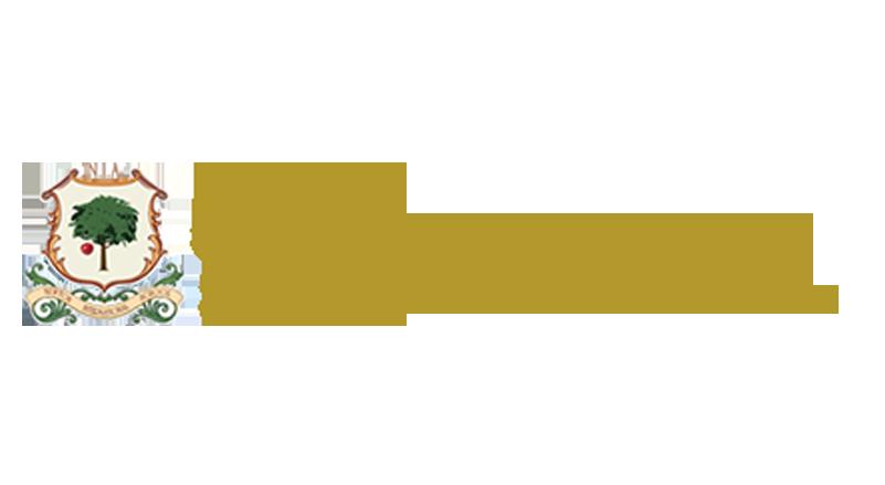 Newton international academy